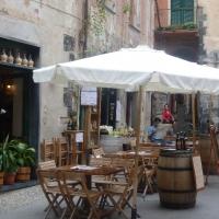 Monterosso village- Cinque Terre