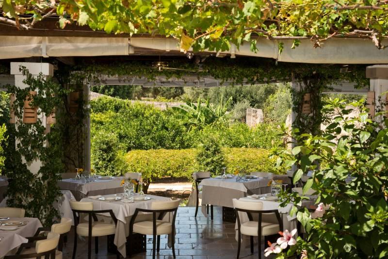 Palms restaurant in the orange garden