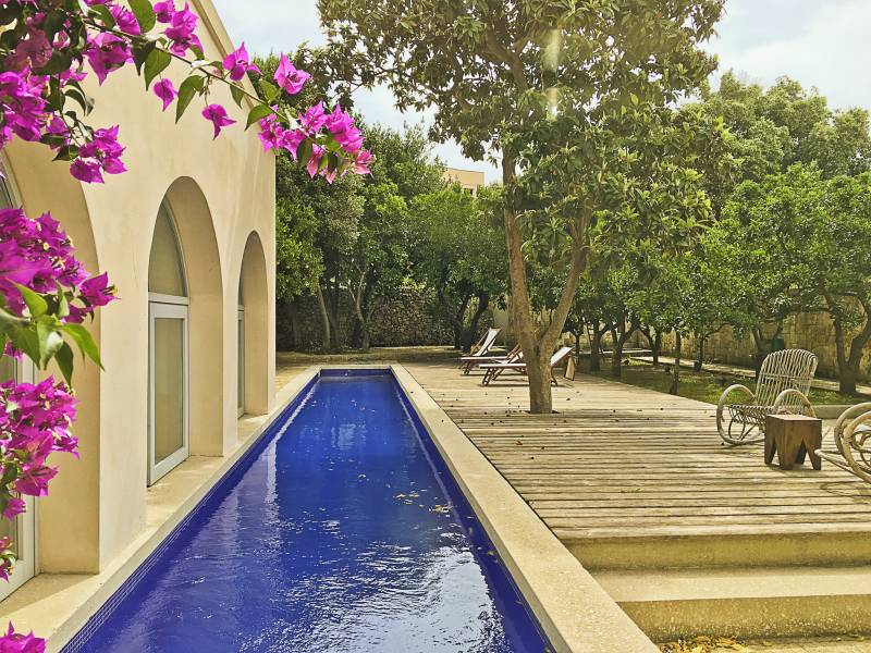 Terrace + pool