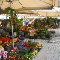 Flower Markets in Rome
