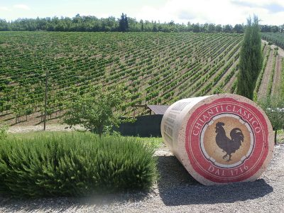 Discover the world of Chianti in Tuscany