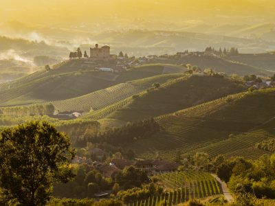 Langhe - Piedmont