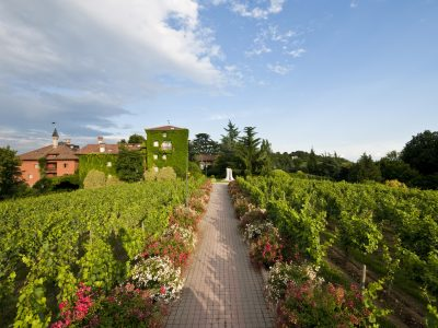 The vineyards and L'Abereta Relais and Chateaux in Erbusco